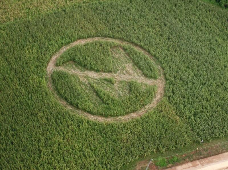 082713_Monsanto_4x3-800x596